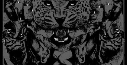 Skynet-The-Wild