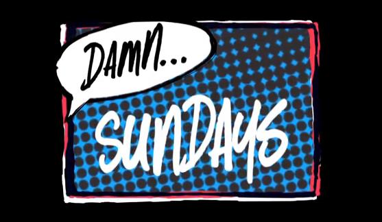 New Damn Sunday Sewa at Stoner Park