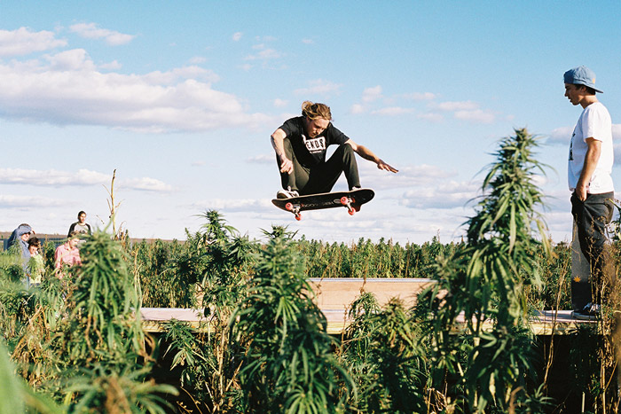 Afends start using hemp to become more sustainable – skate a ramp in hemp field to celebrate