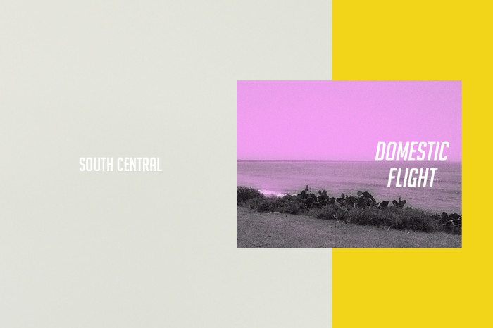 South Central domestic flight capsule collection