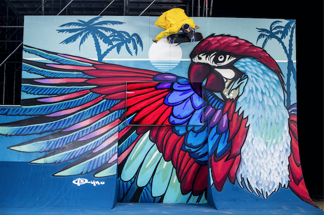 Brazilian Pedro Barros turns skatepark into street art
