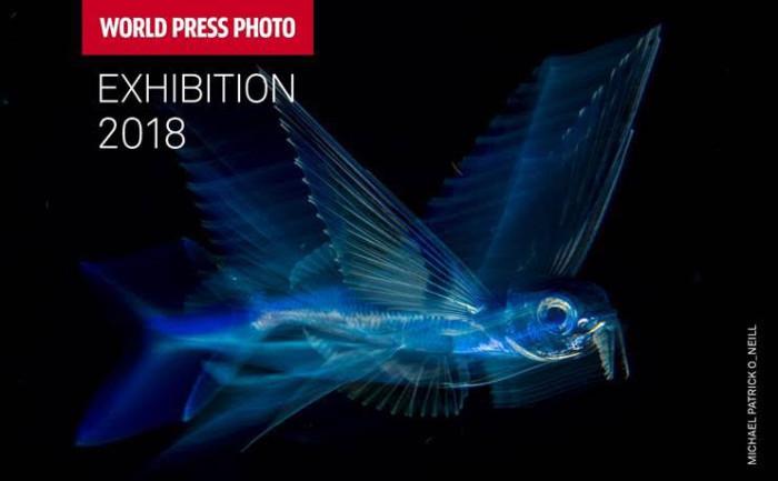 MOSTRA WORLD PRESS PHOTO 2018 'FOTOGRAFIA E GIORNALISMO: LE IMMAGINI PREMIATE NEL 2018′