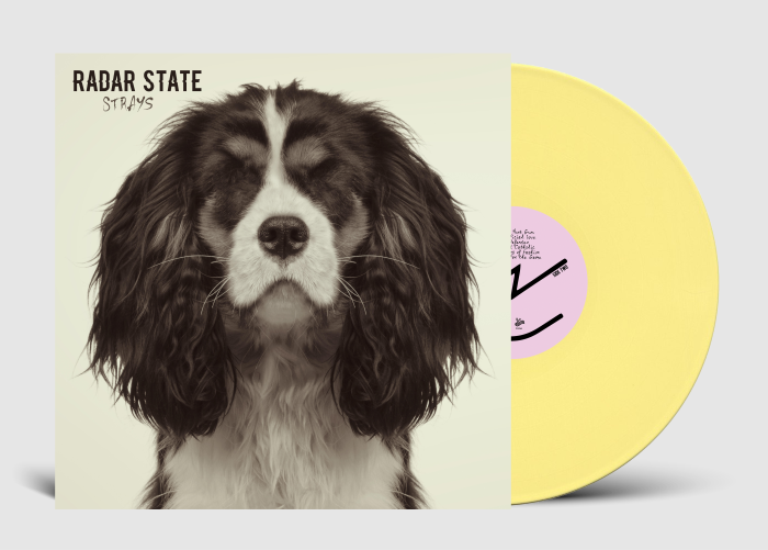 Radar State (The Get Up Kids / The Anniversary) 'Strays' out now (Wiretap Records / Disconnect Disconnect Records)