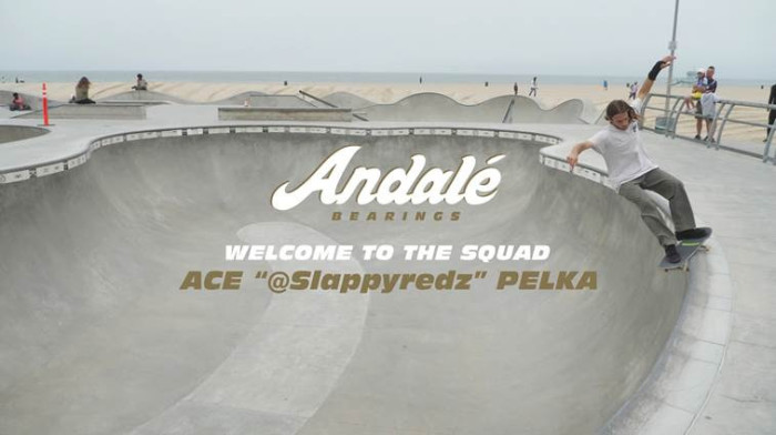 Andale Welcomes Ace Pelka to the Team