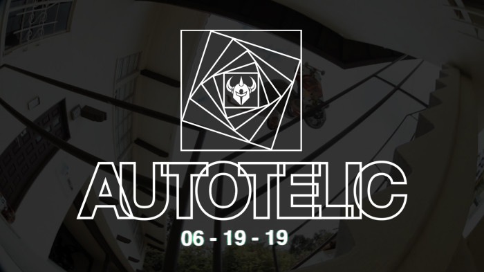 Darkstar Skateboards 'Autotelic'