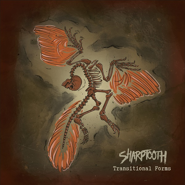 Sharptooth 'Transitional Forms'