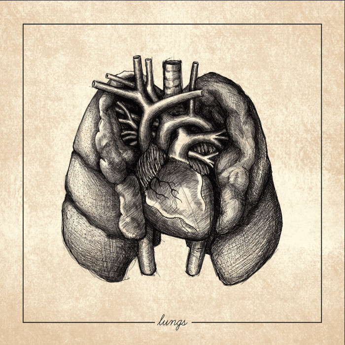 Regrowth 'Lungs'