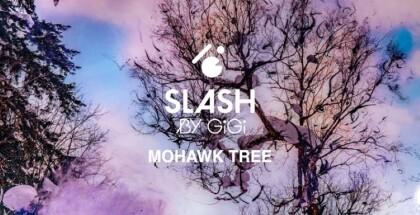 sully-x-slash