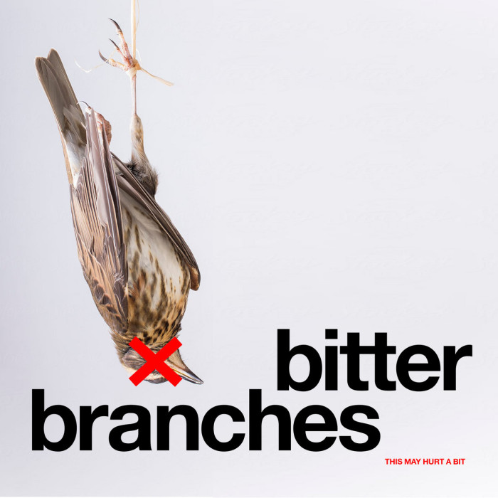 Bitter Branches 'This May Hurt A Bit'